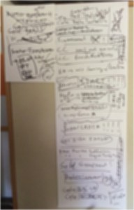 blurred plan IMG_0541 from 1_11_14